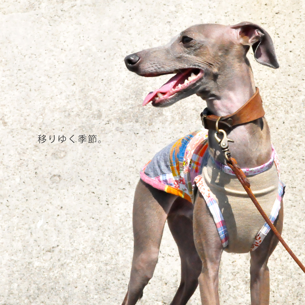 犬服 移りゆく季節 パッチワークインド綿 選べる3タイプ×3カラー(ベージュ/ネイビー/グレイ)