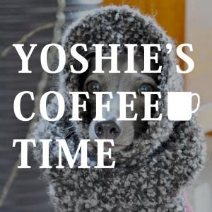 YOSHIE'S-COFFEE-TIME-愛犬の秋冬服をご注文の前に