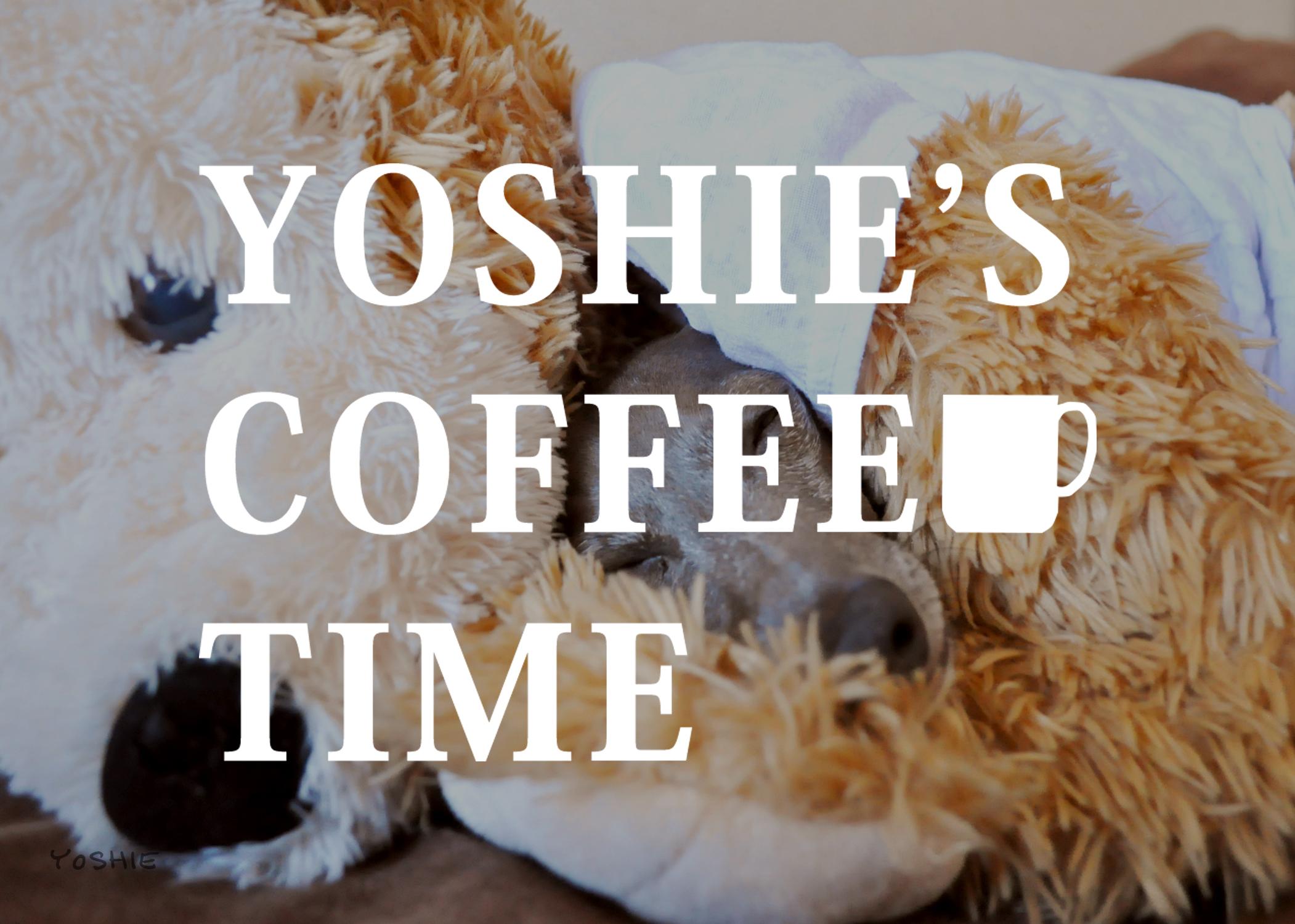 ボク(イタグレBuono!)とダッフィーは幼なじみ-YOSHIE'S COFFEE TIME