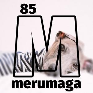 イタグレBuono!は「癲癇(てんかん)」なの?愛犬が病気、怪我をした時に心がけているたった1つの大切なこと【ARATA HOUSEメルマガ Vol.85】2016/9/23発行