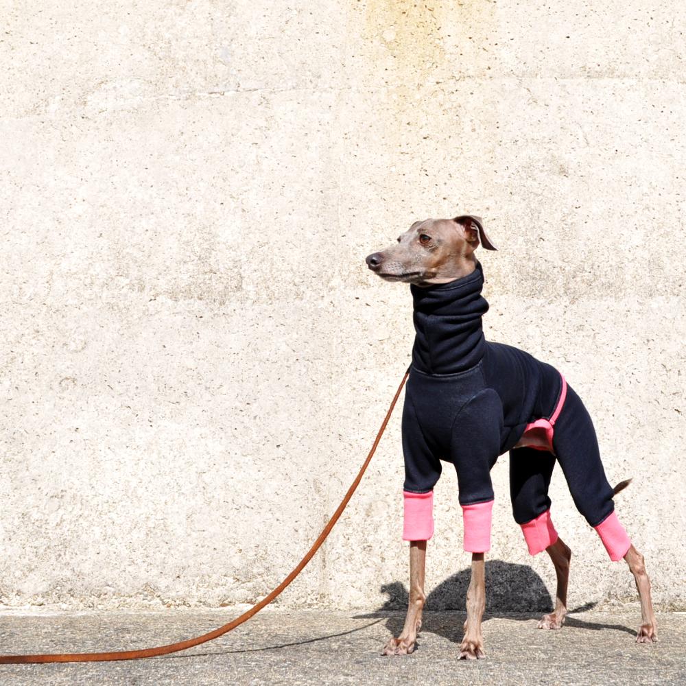 「冬の新作犬服」夏より暖かい冬ウィンタースポーツ|裏起毛ボンバーヒートニット(保温)