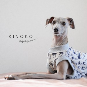 犬種別商品サイズ表「犬服」