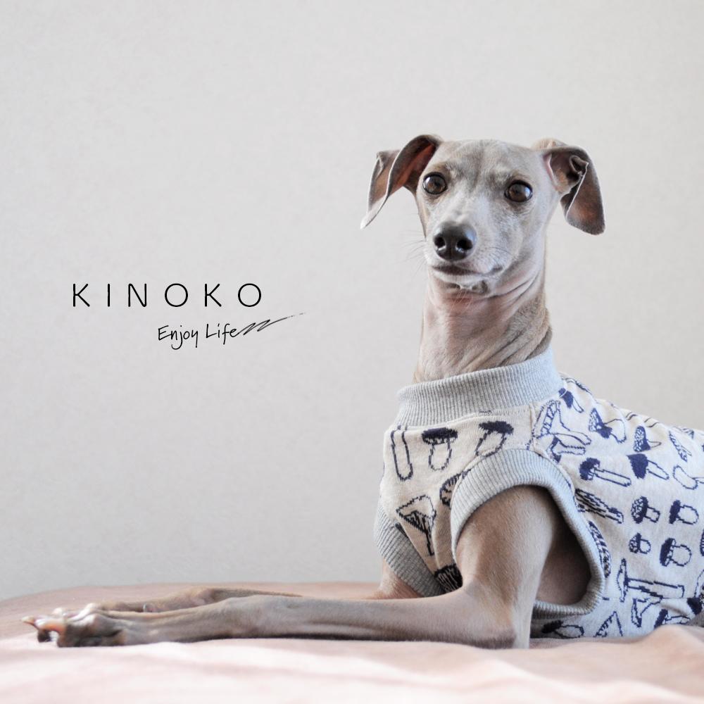 """「真冬に """"ぽっかぽかストーブ"""" のお部屋で、ニットのお洋服を着せたくて。」犬服 KINOKO ジャガードニット"""