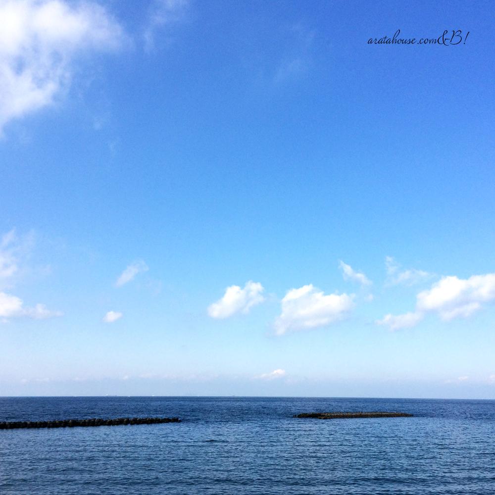 「淡路島の暮らし」天気がいいので、よっちゃんと愛犬を連れて放牧へ。