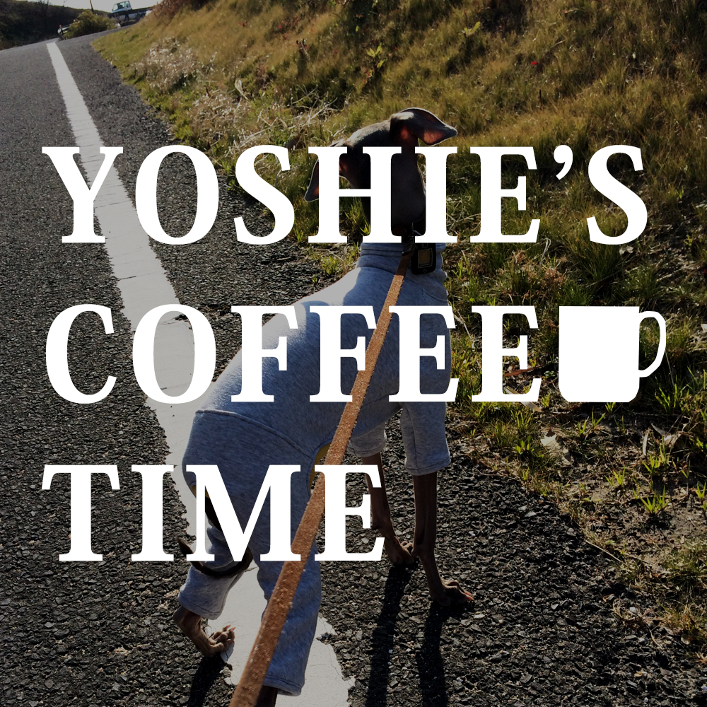 YOSHIE'S COFFEE TIME-「イタグレ骨折治療」から3年が経ち感じたこと。「再骨折予防」のために暮らしの中で心がけていること。