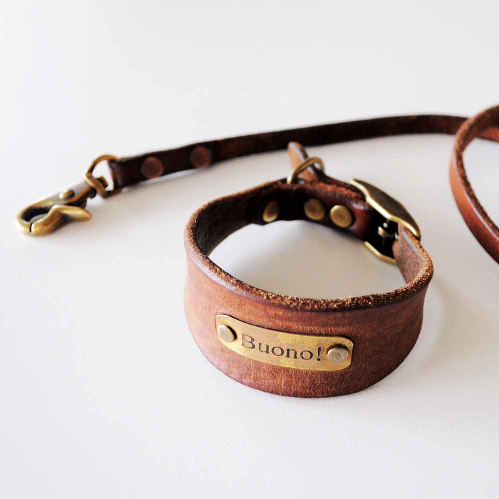 「迷子札と鑑札」と「散歩リード&首輪/ロングリード」のことをまとめました。|我家はコレを使ってます。イタグレBuono!の愛用品