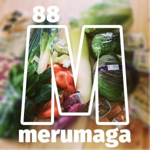 2018年4月8日(日)の特典は淡路島の朝獲れ新鮮野菜です。4月は新玉に、レタス、ホウレン草がとっても美味しい季節です。【ARATA HOUSEメルマガ Vol.88】2018/4/5発行