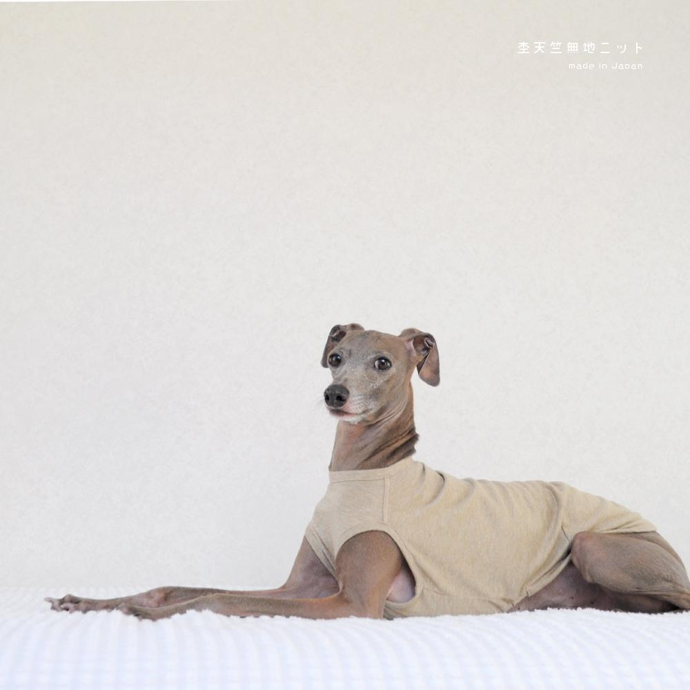 犬服|杢天竺無地ニット|選べる4タイプ×3カラー(ベージュ/グレイ/ネイビー)